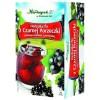 Herb. z czarnej porzeczki fix 2,5g*20szt. HERBAPOL